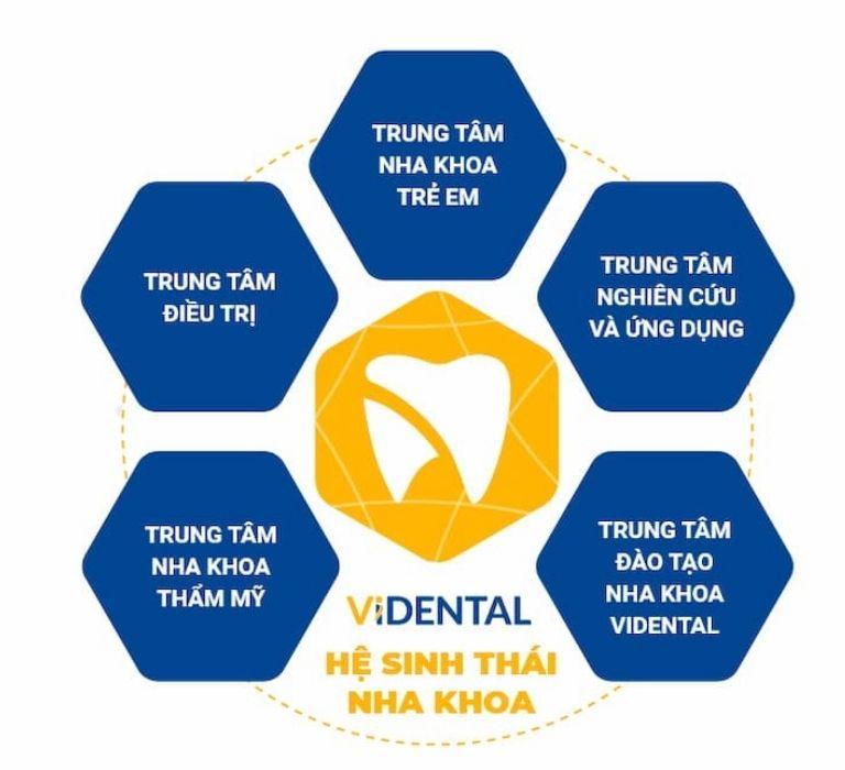 Vidental Thành lập Trung tâm đào tạo nha khoa